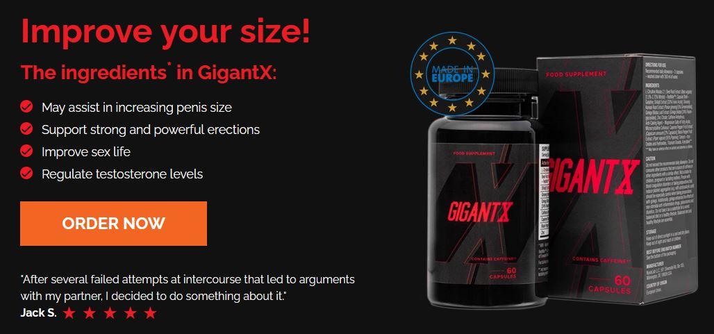 GigantX 1
