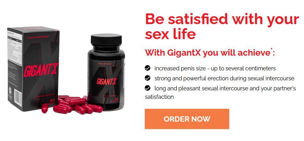 GigantX 2